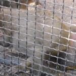 Зоопарк 174