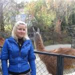 Зоопарк 188