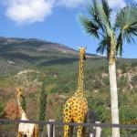Зоопарк 199