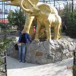 Зоопарк 236