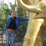 Зоопарк 239