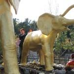 Зоопарк 242