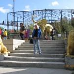 Зоопарк 244