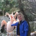Зоопарк 304