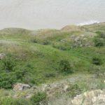 зеленый склон