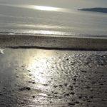 море на восходе